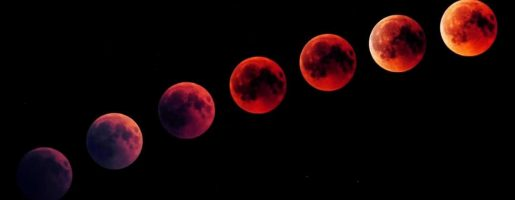 Should I Bleed With The Full Moon Or New Moon